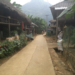 Village on rice paddies
